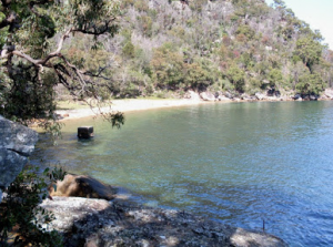 Boat hire Pittwater Hungry beach