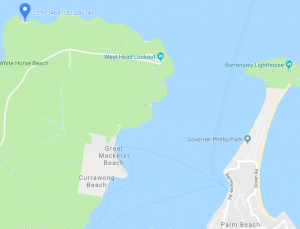 Boat hire Pittwater Flint and Steel beach