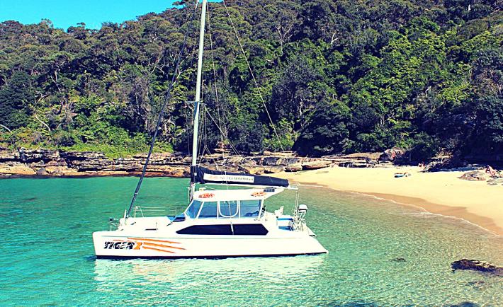 Tiger 2 Resort Catamaran Hire